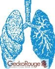 Lungs Counted Cross Stitch Kit (FSLNGS996)